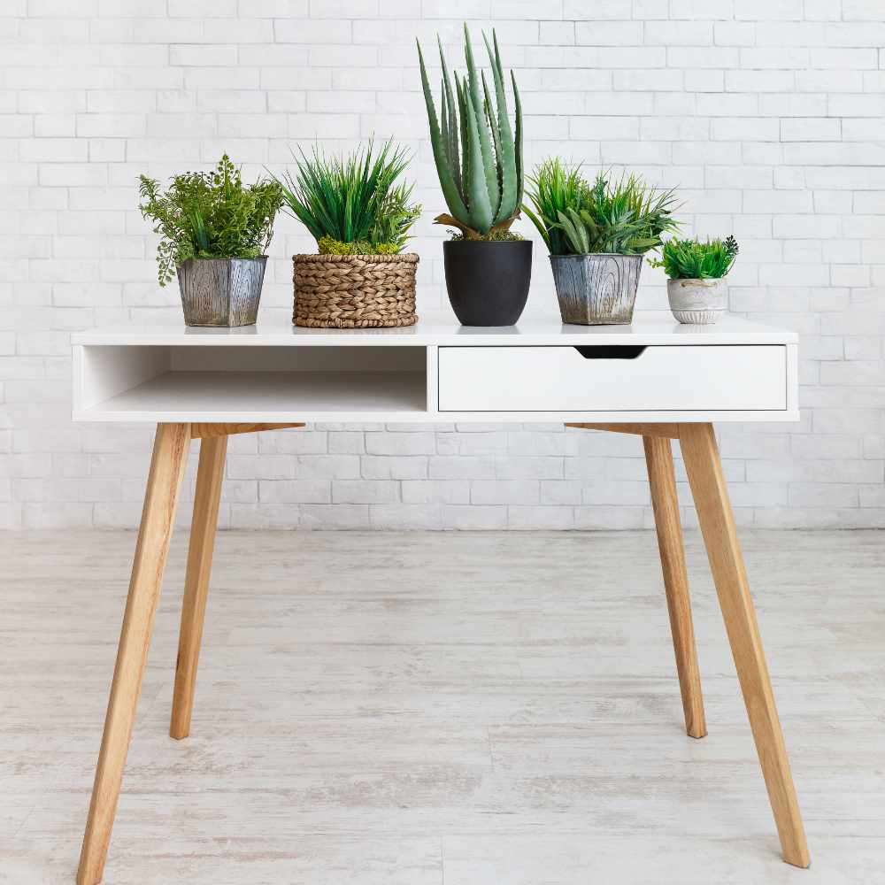 houseplants-in-various-pots-on-table-against-wall-WQ4GACX