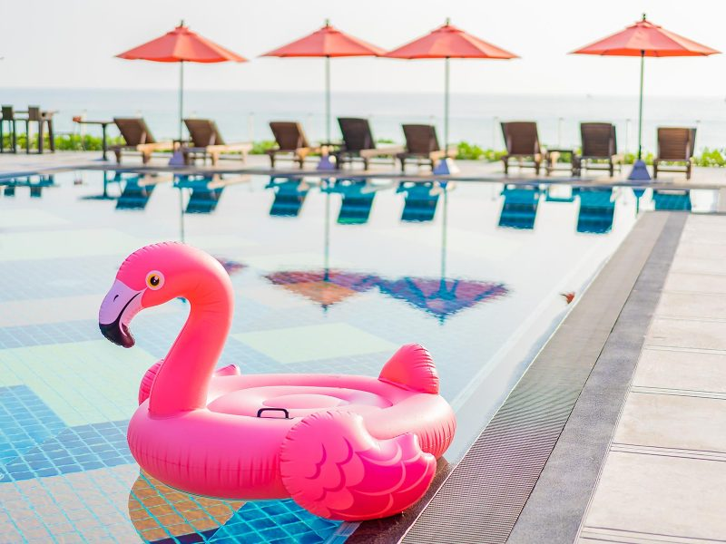 flamingo-float-around-swimming-pool-in-hotel-resor-8RE79VY